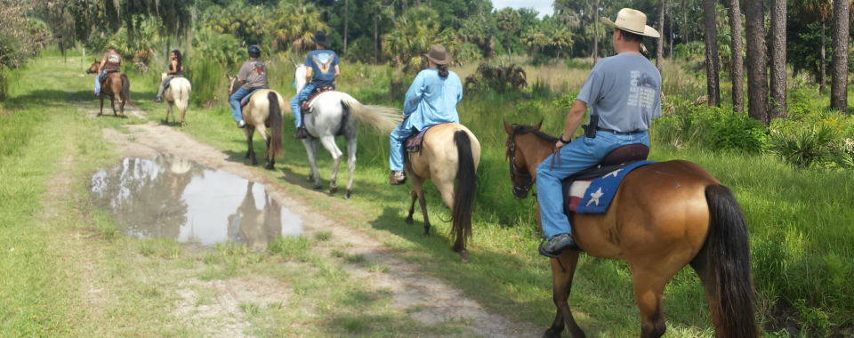 Horseback Riding - In The Breeze Ranch